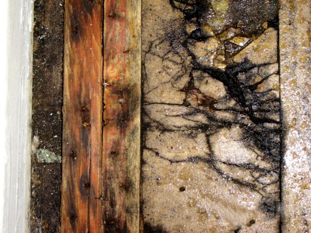 Eliminating Mould Fom Cottage Walls How To Build A House